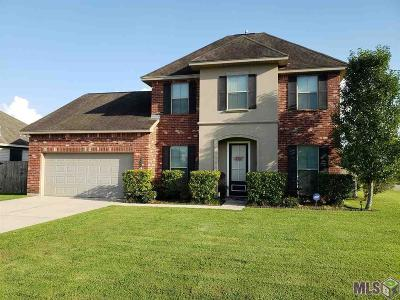 Denham Springs Single Family Home For Sale: 9084 Millikens Bend