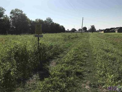 Brusly Residential Lots & Land For Sale: 3824 Borruano Acres