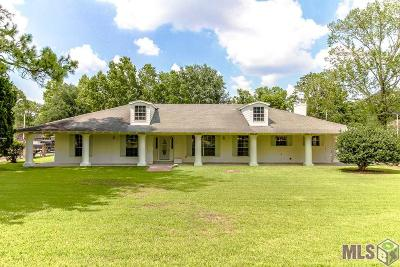 Baton Rouge Single Family Home For Sale: 9237 Hyacinth Ave
