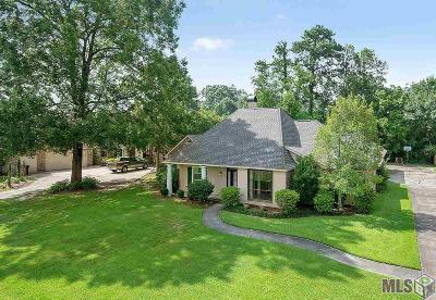 Baton Rouge Single Family Home For Sale: 17420 Beachwood Ave