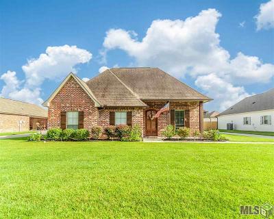 Denham Springs Single Family Home For Sale: 10688 Creek Haven Ln