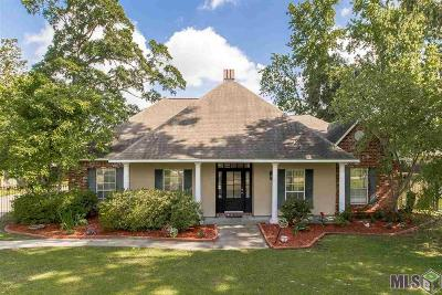 Prairieville Single Family Home For Sale: 37276 Prairie Dr