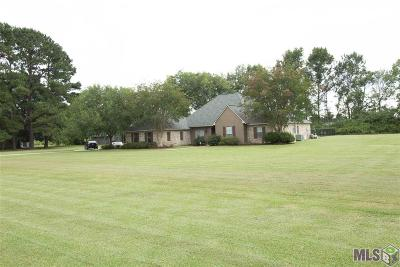 Prairieville Single Family Home For Sale: 36321 C Braud Rd