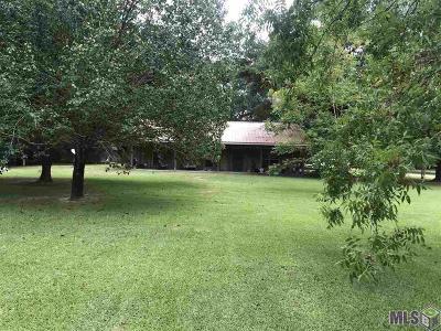 Denham Springs Single Family Home For Sale: 31716 Old River Rd