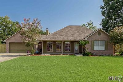 Prairieville Single Family Home For Sale: 37462 Southwood Village Ave