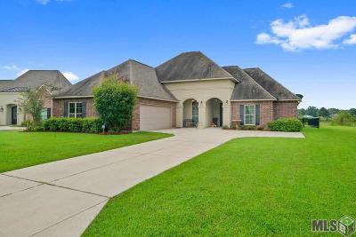 Prairieville Single Family Home For Sale: 39381 Oceanview Ave