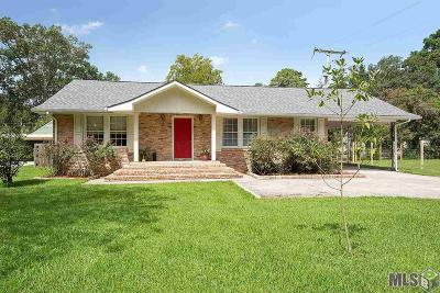 Baton Rouge Single Family Home For Sale: 580 Keed Ave