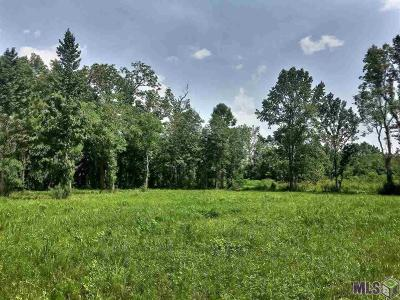 Prairieville Residential Lots & Land For Sale: 37205 White Rd