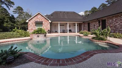 Central Single Family Home For Sale: 13301 Wood Creek Dr
