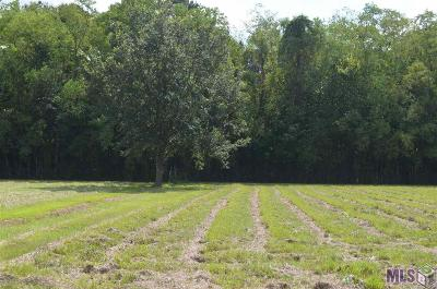 Gonzales Residential Lots & Land For Sale: Jh-3-B Anna Rd