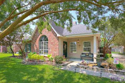 Prairieville Single Family Home For Sale: 16089 Kirsten Dr