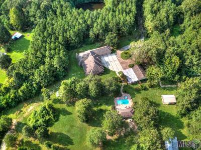 Walker Single Family Home For Sale: 39855 John Lanier Rd