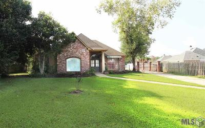 Prairieville Single Family Home For Sale: 38205 E Lakeview Dr