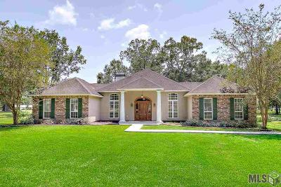 Prairieville Single Family Home For Sale: 16185 Jordan Dr