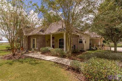 Prairieville Single Family Home For Sale: 16339 Alleman Rd