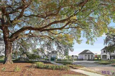 Village Of Conway Single Family Home For Sale: 735 Conway Village Blvd