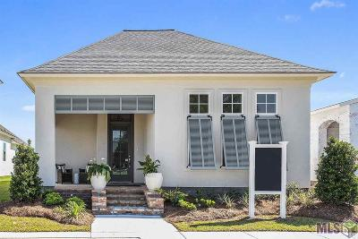 Village Of Conway Single Family Home For Sale: 521 Conway Village Blvd