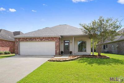 Baton Rouge Single Family Home For Sale: 16244 Venetian Ave