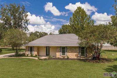 Gonzales Single Family Home For Sale: 41238 Demi Mille Rd