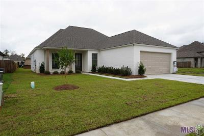 Geismar Single Family Home For Sale: 12059 Amsterdam Ave