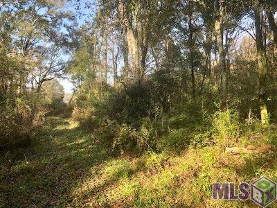 Gonzales Residential Lots & Land For Sale: E Petite St