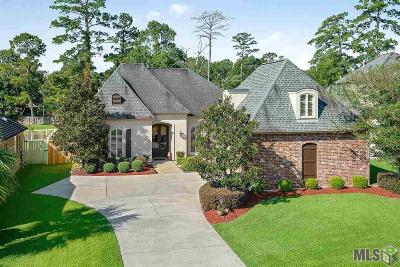 Baton Rouge Single Family Home For Sale: 9252 Homestead Dr