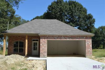 Denham Springs Single Family Home For Sale: 9927 Langston Dr