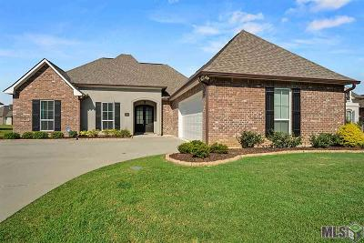 Central Single Family Home For Sale: 16082 Redstone Dr