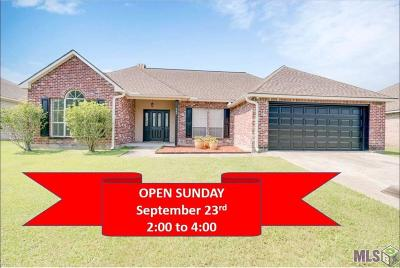 Baton Rouge Single Family Home For Sale: 240 Briarhaven Dr