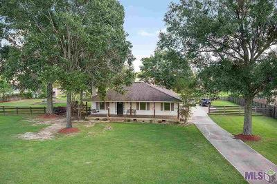 Prairieville Single Family Home For Sale: 16484 Newman Nickens Rd