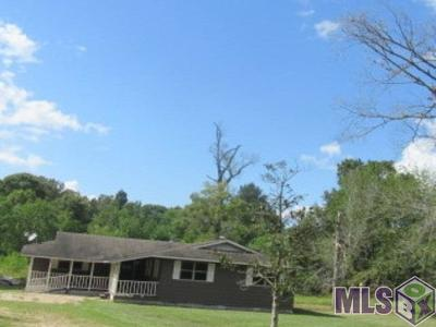 Denham Springs Single Family Home For Sale: 38691 Reinninger Rd