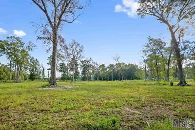 Denham Springs Residential Lots & Land For Sale: 34327 Woodland Trail Ave