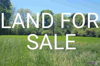 Denham Springs Residential Lots & Land For Sale: 34990 Joel Ott Dr