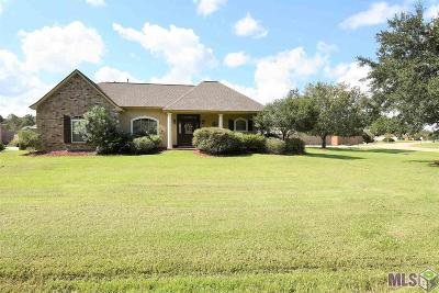 Single Family Home For Sale: 12668 Pendarvis Ln