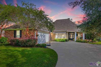 Baton Rouge Single Family Home For Sale: 19025 Vignes Lake Ave