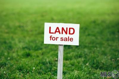 Denham Springs Residential Lots & Land For Sale: Lot 35 Bessie Dr