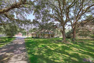 Baton Rouge Single Family Home For Sale: 14017 Joor Rd
