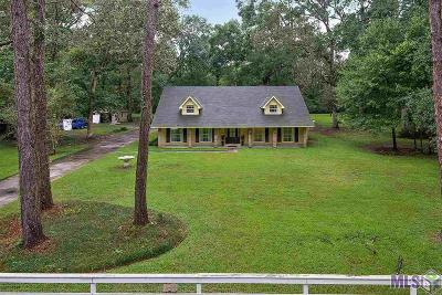 Baton Rouge Single Family Home For Sale: 7752 Madewood Ave