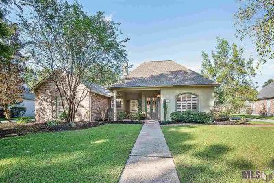 Baton Rouge Single Family Home For Sale: 3426 Westervelt Ave