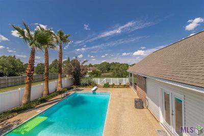 Prairieville Single Family Home For Sale: 18504 Perkins Rd
