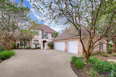 Baton Rouge Single Family Home For Sale: 19022 W Pinnacle Cir