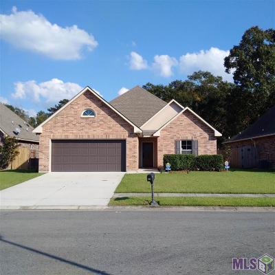 Single Family Home For Sale: 10203 Savannah Jane Ln