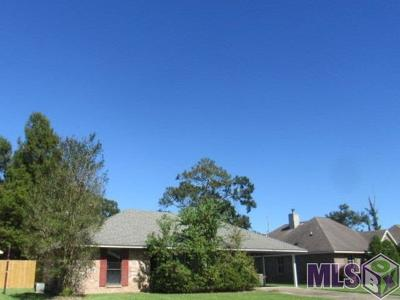 Baton Rouge Single Family Home For Sale: 14317 Bywood Ave