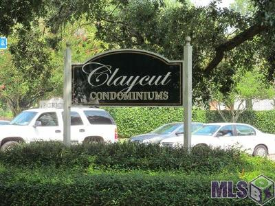 Baton Rouge Condo/Townhouse For Sale: 4900 Claycut Rd #29