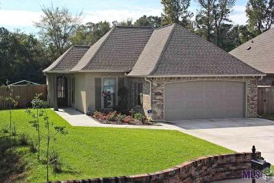 Denham Springs Single Family Home For Sale: 9450 Wyndham Way