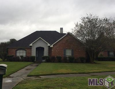 Baton Rouge Single Family Home For Sale: 5151 River Meadow Dr