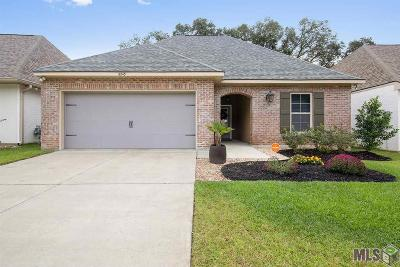 Baton Rouge Single Family Home For Sale: 6243 Tiger Trace Ave