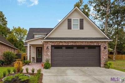 Baton Rouge Single Family Home For Sale: 9110 Old Garden Ave