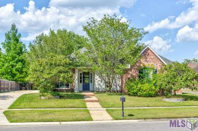 Baton Rouge Single Family Home For Sale: 10137 Glen View Ave
