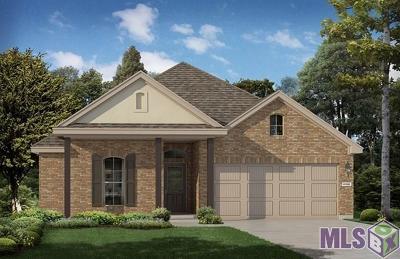 Denham Springs Single Family Home For Sale: 8175 Fairlane Dr